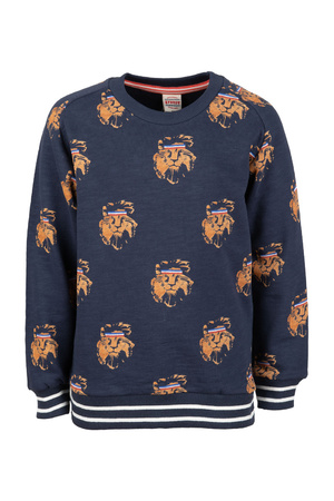 Sweater Sturdy